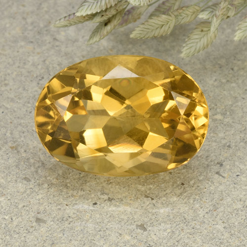 Medium-Light Golden Citrina Gema - 5.7ct Forma ovalada (ID: 492604)