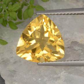 Yellow Golden Citrine Gem - 8.8ct Trillion Facet (ID: 498473)