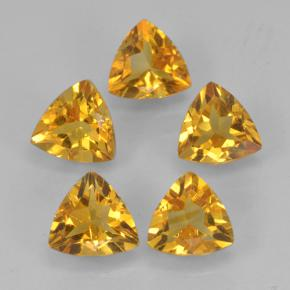 Yellow Golden Citrine Gem - 0.4ct Trillion Facet (ID: 501292)