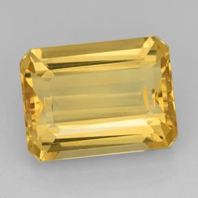 Medium Gold Citrine Gem - 11.8ct Octagon Step Cut (ID: 503449)