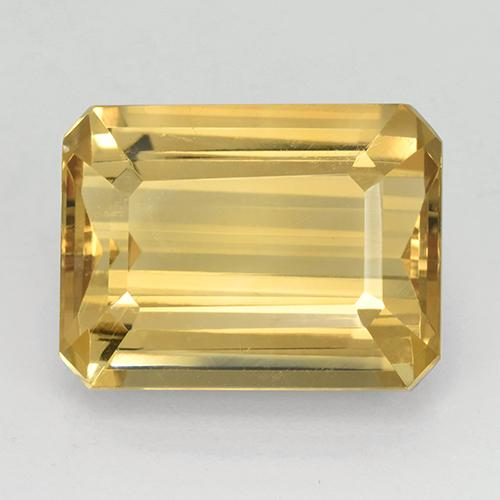 Gold Citrine Gem - 11.5ct Octagon Step Cut (ID: 503628)