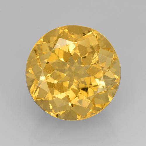 Medium Golden Citrine Gem - 8.5ct Round Facet (ID: 504923)