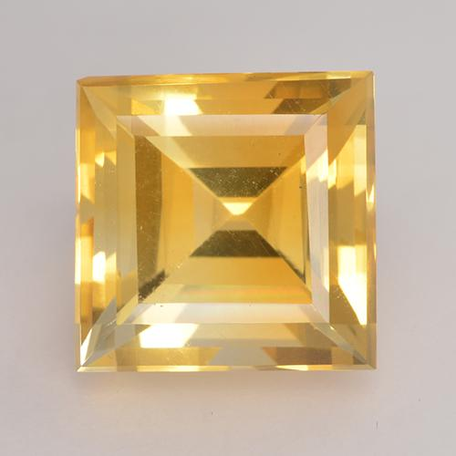 Medium Gold Citrino Gem - 3.5ct Taglio quadrato (ID: 531236)