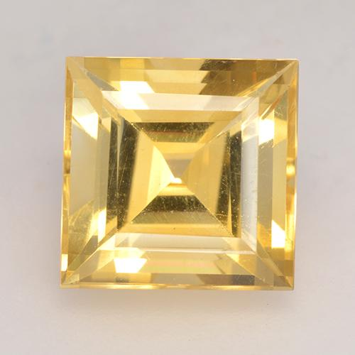 Medium Gold Citrino Gem - 3.5ct Taglio quadrato (ID: 531244)