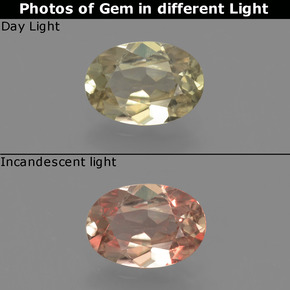 Brownish Yellow Color-Change Diaspore Gem - 0.7ct Oval Facet (ID: 424659)