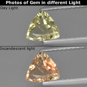 Green to Pink Color-Change Diaspore Gem - 0.7ct Trillion Facet (ID: 454437)