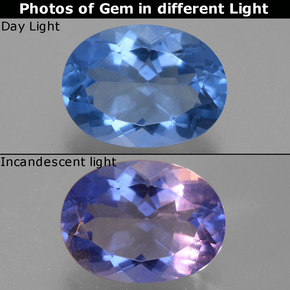 Dark Blue Color-Change Fluorite Gem - 8.6ct Oval Facet (ID: 445408)