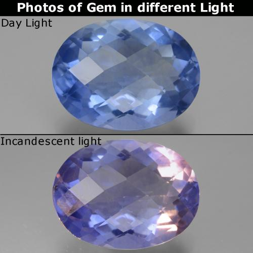 Violet to Blue Color-Change Fluorite Gem - 18.8ct Oval Checkerboard (ID: 445414)