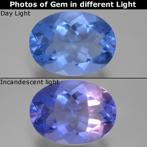 Violet to Blue Color-Change Fluorite Gem - 20.8ct Oval Facet (ID: 445415)