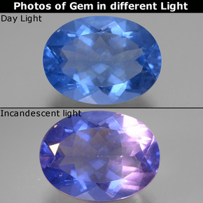Violet to Blue Color-Change Fluorite Gem - 21.6ct Oval Facet (ID: 445592)