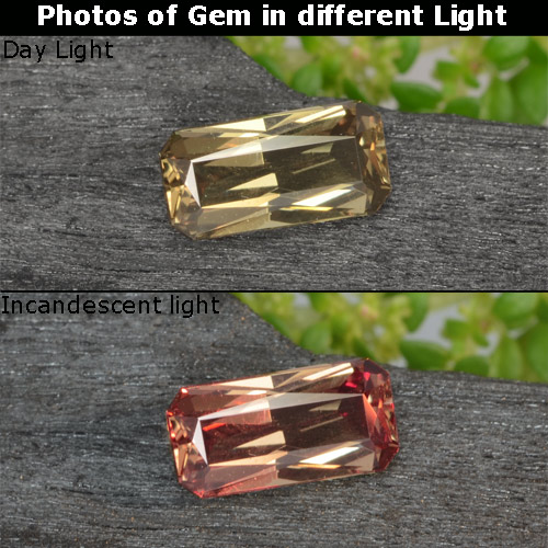 Greenish Brown To Red Pink Color-Change Garnet Gem - 0.7ct Octagon / Scissor Cut (ID: 238083)
