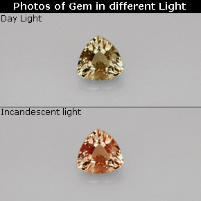 Buy 0.75ct Greenish Brown To Red Pink Color-Change Garnet 5.52mm x 5.39mm from GemSelect (Product ID: 242069)
