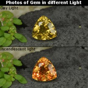 Golden Brown to Orange Color-Change Garnet Gem - 0.7ct Trillion Facet (ID: 252643)
