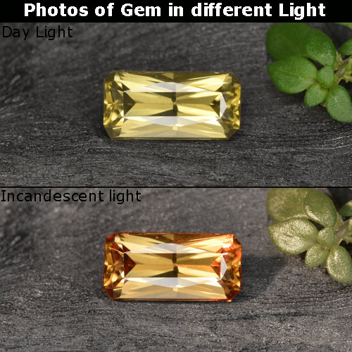Golden Brown to Orange Color-Change Garnet Gem - 0.7ct Octagon / Scissor Cut (ID: 253177)