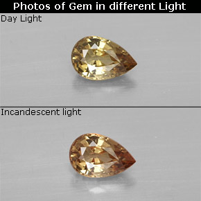 Greenish Brown To Red Pink Color-Change Garnet Gem - 0.6ct Pear Facet (ID: 327745)
