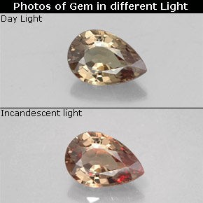 Green to Red-Pink Color-Change Garnet Gem - 0.6ct Pear Facet (ID: 327800)