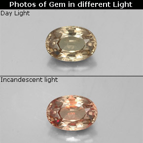 Greenish Brown to Orange Color-Change Garnet Gem - 0.6ct Oval Facet (ID: 329385)