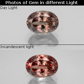 Golden Brown to Orange Color-Change Garnet Gem - 1.3ct Oval Facet (ID: 344553)
