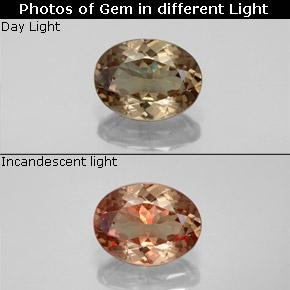 Golden Brown to Orange Color-Change Garnet Gem - 1.5ct Oval Facet (ID: 344891)