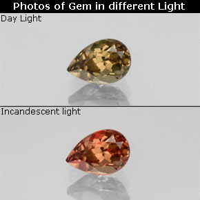 Golden Brown to Orange Color-Change Garnet Gem - 0.6ct Pear Facet (ID: 345775)