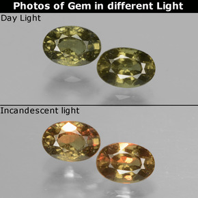 Golden Yellow Color-Change Garnet Gem - 0.7ct Oval Facet (ID: 428858)