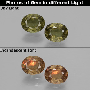 Golden Yellow Color-Change Garnet Gem - 0.5ct Oval Facet (ID: 428859)