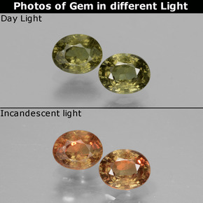 Golden Yellow Color-Change Garnet Gem - 0.5ct Oval Facet (ID: 428860)