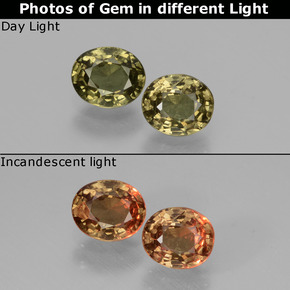 Greenish Brown To Red Pink Color-Change Garnet Gem - 0.5ct Oval Facet (ID: 428861)
