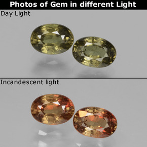 Greenish Brown To Red Pink Color-Change Garnet Gem - 0.7ct Oval Facet (ID: 428863)