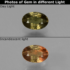 Greenish Brown To Red Pink Color-Change Garnet Gem - 0.6ct Oval Facet (ID: 429000)