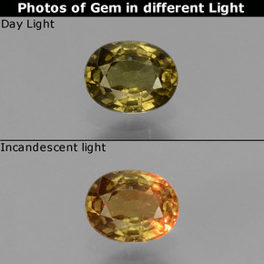 Greenish Brown To Red Pink Color-Change Garnet Gem - 0.6ct Oval Facet (ID: 429001)