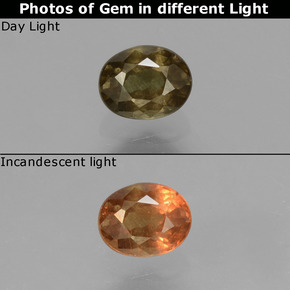 Greenish Brown To Red Pink Color-Change Garnet Gem - 0.6ct Oval Facet (ID: 429002)