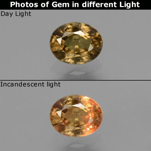 Greenish Brown To Red Pink Color-Change Garnet Gem - 0.7ct Oval Facet (ID: 429006)