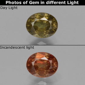 Greenish Brown To Red Pink Color-Change Garnet Gem - 0.8ct Oval Facet (ID: 429109)