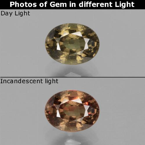 Greenish Brown To Red Pink Color-Change Garnet Gem - 0.7ct Oval Facet (ID: 429117)
