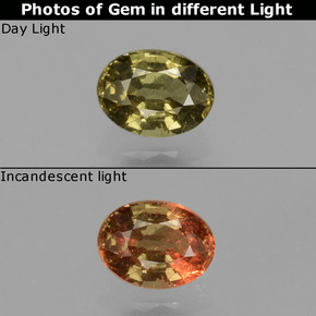 Greenish Brown To Red Pink Color-Change Garnet Gem - 0.5ct Oval Facet (ID: 429268)