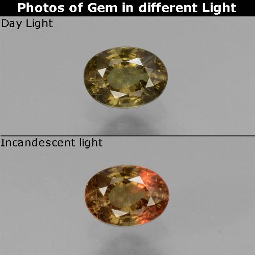 Greenish Brown To Red Pink Color-Change Garnet Gem - 0.5ct Oval Facet (ID: 429335)