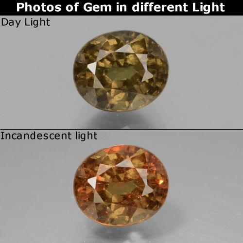Greenish Brown To Red Pink Color-Change Garnet Gem - 1.6ct Oval Facet (ID: 429482)