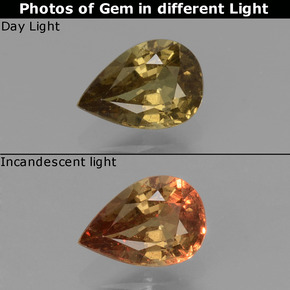 Greenish Brown To Red Pink Color-Change Garnet Gem - 0.6ct Pear Facet (ID: 429579)