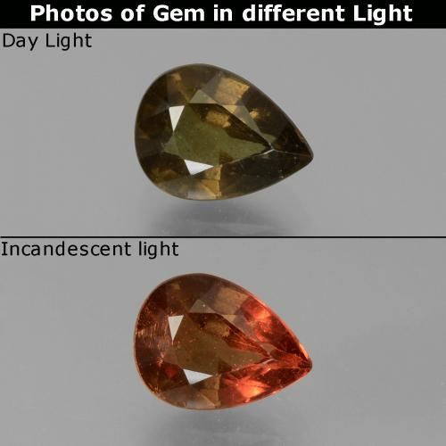 Greenish Brown to Orange Color-Change Garnet Gem - 1.8ct Pear Facet (ID: 451452)