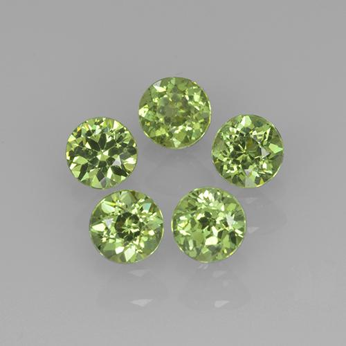 Medium Green Granato demantoide Gem - 0.2ct Sfaccettatura rotonda (ID: 241842)