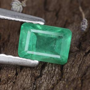 0.7ct Octagon Stufenschliff Medium Deep Green Smaragd Edelstein (ID: 315501)