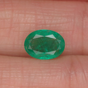 Buy 1.13 ct Green Emerald 8.08 mm x 5.9 mm from GemSelect (Product ID: 319517)
