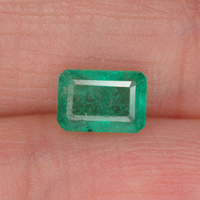 0.9ct Octagon Facet Medium Deep Green Emerald Gem (ID: 337891)