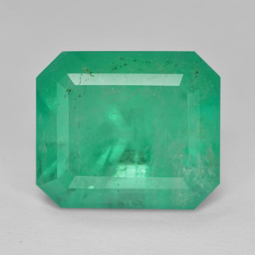 Medium Green Emerald Gem - 10.9ct Octagon Step Cut (ID: 345358)
