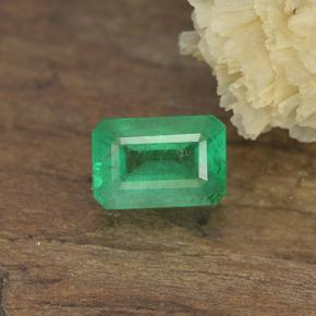 0.5ct Octagon Stufenschliff Warm Green Smaragd Edelstein (ID: 498679)