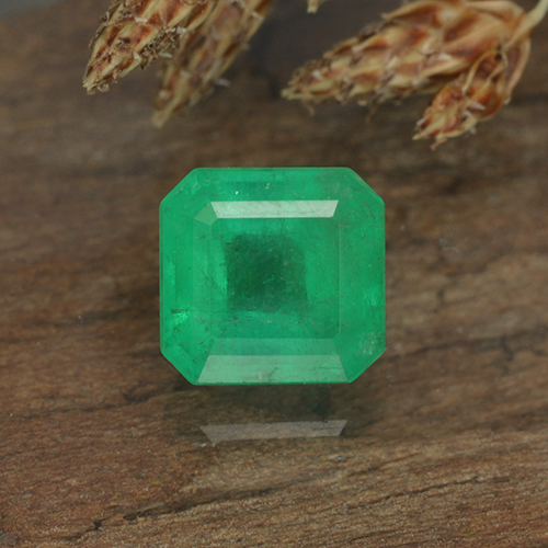 Medium Green Esmeralda Gema - 0.8ct Corte octagonal (ID: 499298)