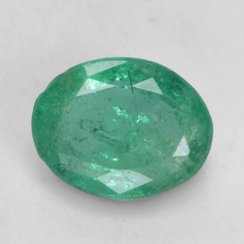 0.8ct Oval Facet Cool Green Emerald Gem (ID: 535860)