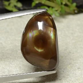 Multicolor Fire Agate Gem - 6.9ct Shark Fin Cabochon (ID: 487152)