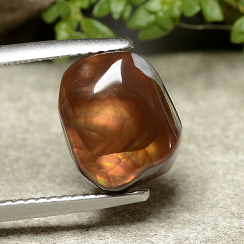 Multicolor Fire Agate Gem - 4.9ct Fancy Cabochon (ID: 488064)